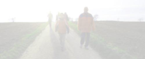 Eine Gruppe geht auf einem Feldweg, schemenhaft erkennbar.